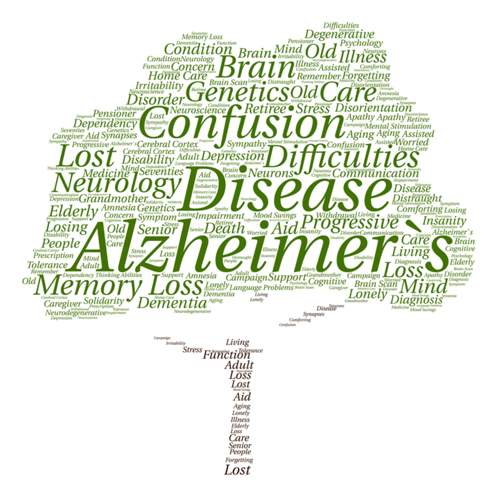 Elderly Care Waterbury CT - Important Steps to Providing Alzheimer's Care at Home
